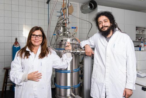 CBD Öl Herstellung in Bioqualität